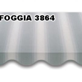 FOGGIA 3864