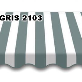 GRIS 2103