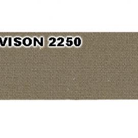 VISION 2250