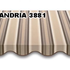 ANDRIA 3881